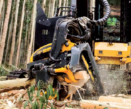 Ponsse launches a new powerful harvester head for processing eucalyptus trees- April 2020